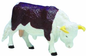 TORO RAZA HEREFORD